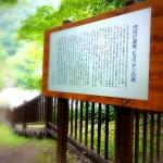 滝への誘導路