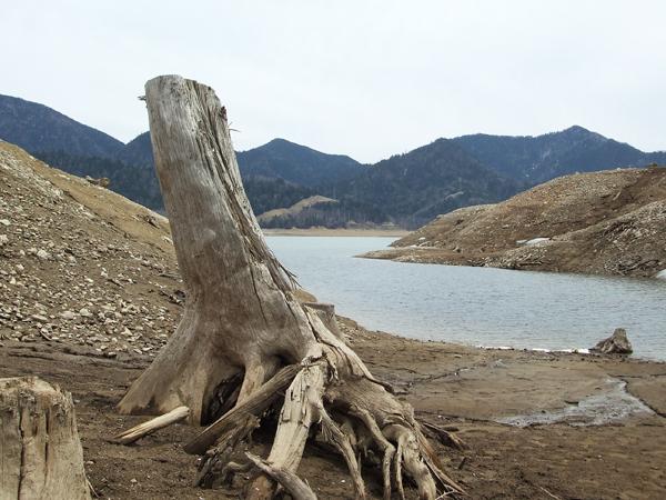 ダムの満水時は全てが水の中.